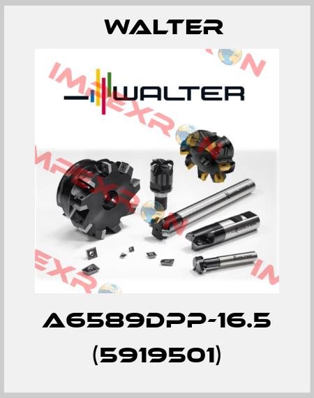 Walter-A6589DPP-16.5 (5919501) price